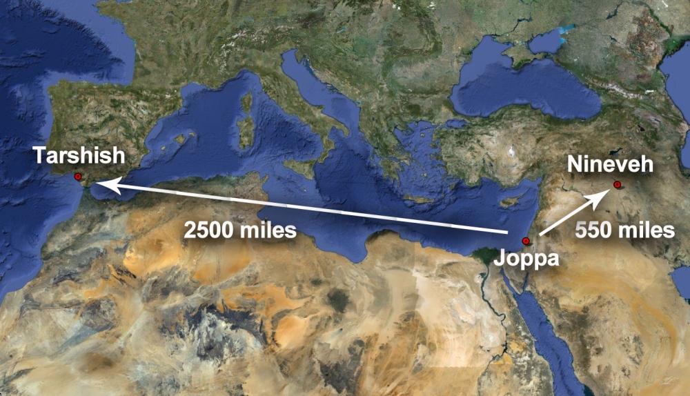 Jonah-Runs-with-Distances